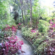 Holumba-Haven-Kalimgpong