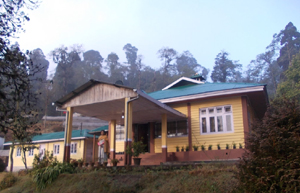 bagora-forest-bungalow