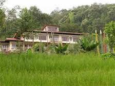 Bamboo Retreat-hotel