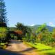 Biksthang Resort