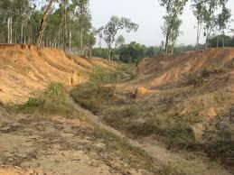 Sonajhuri